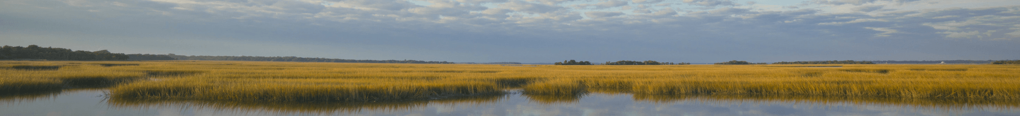 Cloudy Sky Over Marshes from Cumberland Island